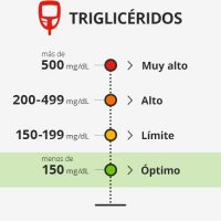 Trigliceridos niveles